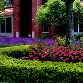 front yard landscaping northville