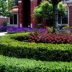 Landscaping in Ann Arbor MI