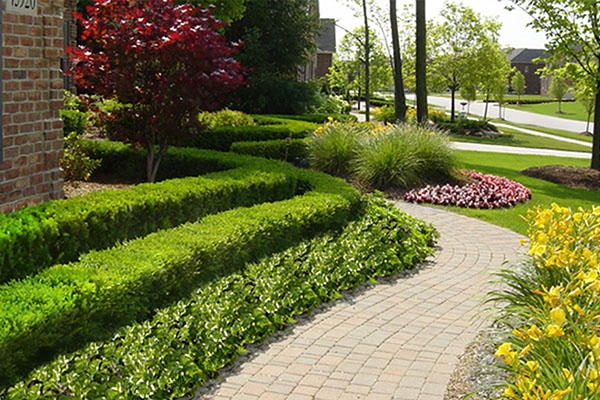 Landscaping in Canton MI