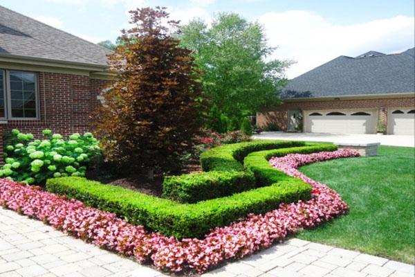 begonias lining paver driveway